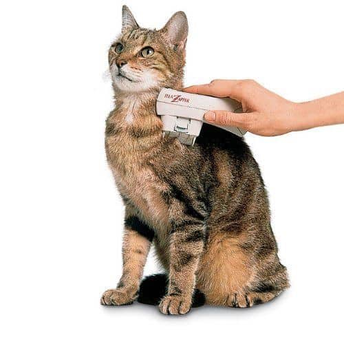 Electric Flea Zapper For Pets